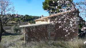 Foto de Finca de olivos y almendros en producción con olivos