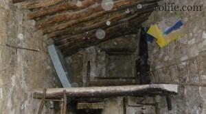 Finca de olivos y almendros en producción en oferta con almendros