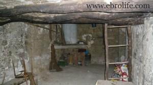 Foto de Finca de olivos y almendros en producción con almendros