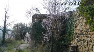 Foto de Finca próxima a La Fresneda con vistas a Torre del Compte en venta con almacén por 70.000€