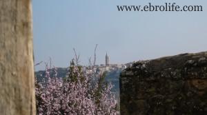 Se vende Finca próxima a La Fresneda con vistas a Torre del Compte con corral por 70.000€