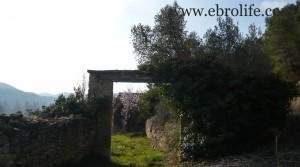 Finca próxima a La Fresneda con vistas a Torre del Compte en oferta con corral por 70.000€