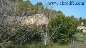 Foto de Finca próxima a La Fresneda con vistas a Torre del Compte con masía