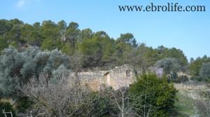 Finca próxima a La Fresneda con vistas a Torre del Compte para vender con agua