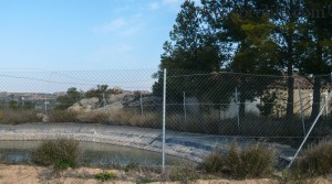 Finca de regadío en Caspe en venta con olivos
