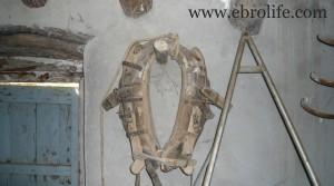 Se vende Finca de regadío en Caspe con agua