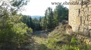 Masía de piedra en Maella a buen precio con masía por 18.000€