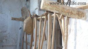 Detalle de Casa de piedra en Mazaleón con agua