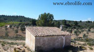 Foto de Finca de olivos en Fabara en venta con masía por 17.000€