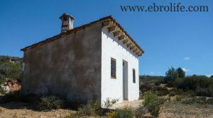 Finca de olivos en Fabara a buen precio con olivos por 17.000€