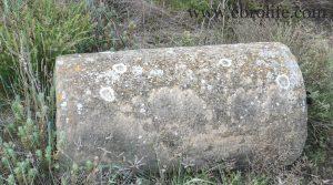 Detalle de Finca de almendros en Maella con olivos por 65.500€