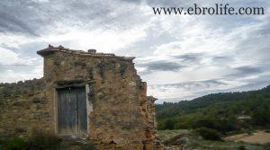 Se vende Finca de almendros en Maella con olivos