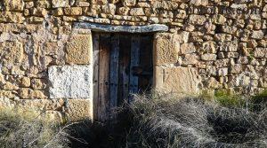 Finca de olivos y almendros en Maella para vender con pinares por