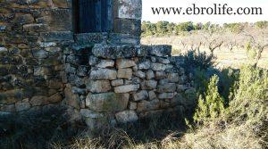 Vendemos Finca de olivos y almendros en Maella con secano por