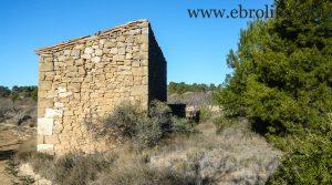 Finca de olivos y almendros en Maella en venta con masía por