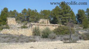 Finca de olivos y almendros en Calaceite en oferta con río