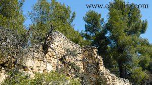 Finca de olivos y almendros en Calaceite para vender con olivos por 85.000€