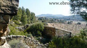 Finca de olivos y almendros en Calaceite a buen precio con río