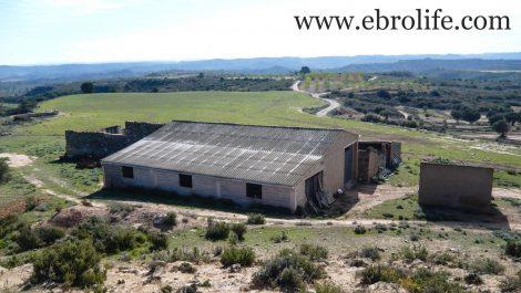 Construcción ganadera en Maella