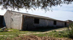 Se vende Construcción ganadera en Maella con casa