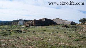 Construcción ganadera en Maella para vender con almacén por 89.000€