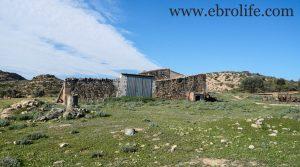Se vende Construcción ganadera en Maella con pinares