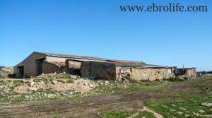 Vendemos Construcción ganadera en Maella con casa