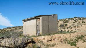 Detalle de Construcción ganadera en Maella con almacén por 89.000€