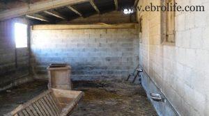 Construcción ganadera en Maella para vender con agua por 89.000€