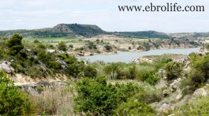Torre con piscina en Caspe a buen precio con agua