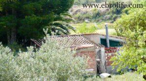 Torre con piscina en Caspe en venta con electricidad por 46.000€