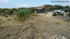 Detalle de Finca rústica en Maella con electricidad por 57.000€
