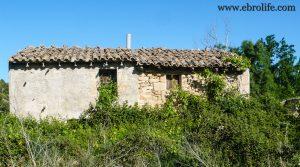 Masía antigua en La Fresneda en venta con pinares por 6.000€