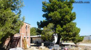 Se vende Finca de recreo en Calaceite con pinares por 70.000€