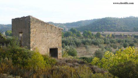 Finca rústica Barranco de los Huertos Calaceite