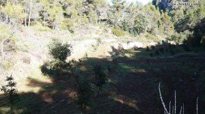 Finca rústica Punta Molinera Ráfales para vender con finca trufera ecológica por 57.000€