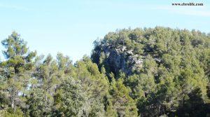 Finca rústica Punta Molinera Ráfales para vender con masía por 57.000€