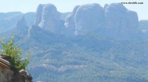 Se vende Finca rústica en Horta de Sant Joan con almendros por 95.000€