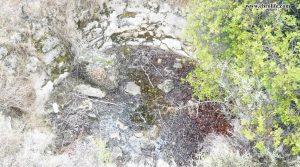 Finca rústica en Calaceite para vender con olivos