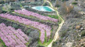 Se vende Finca rústica en Miraflores Caspe con masía por 25.000€