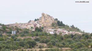 Finca rústica en La Fresneda a buen precio con olivos
