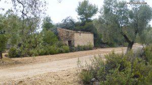 Finca rústica cerca de Calaceite a buen precio con olivos