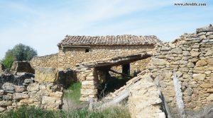 Detalle de Finca rústica de olivos en Valdealgorfa con masía