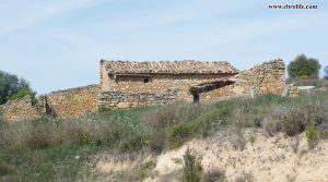 Finca rústica de olivos en Valdealgorfa en oferta con olivos por 36.000€