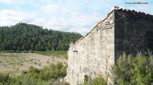 Finca rústica en Maella en oferta con pinares por 31.000€