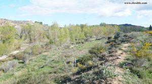 Finca rústica de regadío en Castellseras para vender con agua por 39.000€