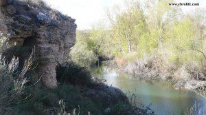 Detalle de Finca rústica de regadío en Castellseras con regadío