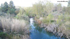 Foto de Finca rústica de regadío en Castellseras en venta con agua