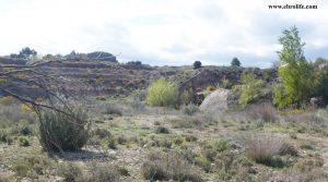 Finca rústica de regadío en Castellseras a buen precio con río por 39.000€