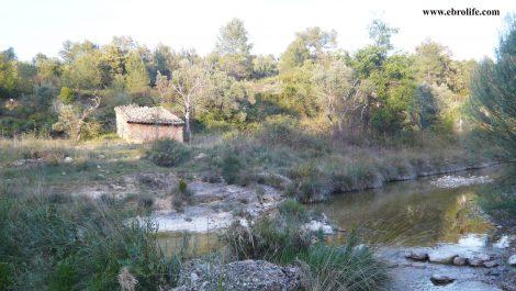 Finca rústica junto al río algars en Arnes